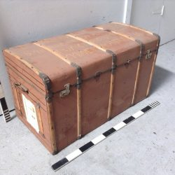 Travel Chests & Trunks